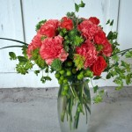 Carnations Vased
